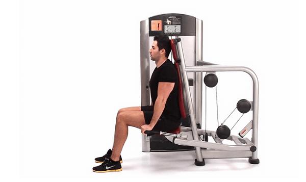 Treino abcde Extensão de tríceps mergulho na máquina