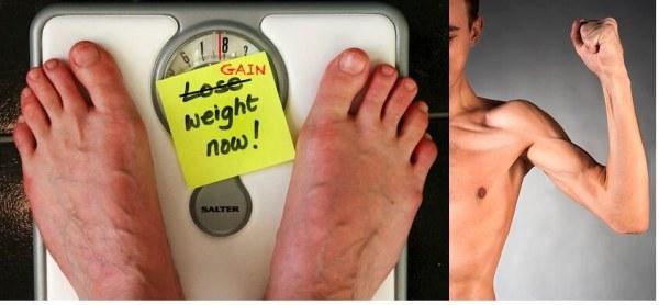 Estimulantes de apetite - ganhar peso