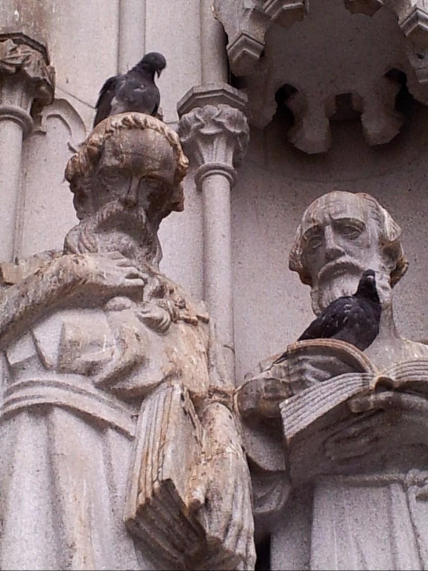 Pigeon apostles