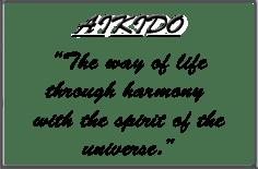Salt Lake City Aikido: Ganshinkan Dojo