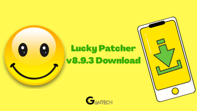 lucky patcher v8.9.3