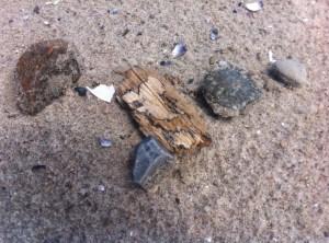Strandfund Steine sammeln Strandtag mit Kindern