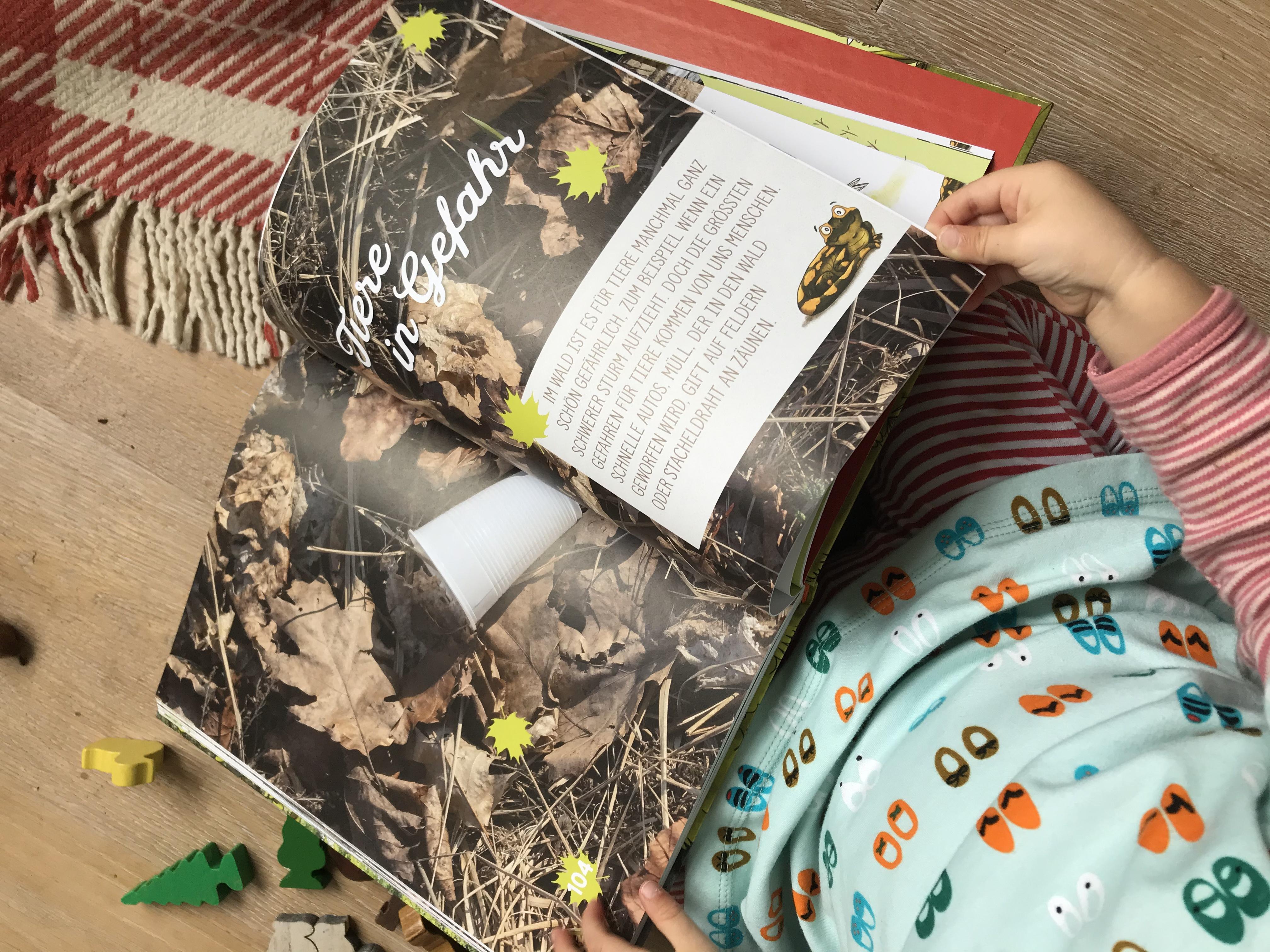 Kinderbuch von Peter wohlleben über Tiere im Wald