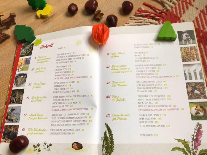 Buchtipp: Tiere im Wald von Peter wohlleben ein Sachbuch für Kinder kinderbuch