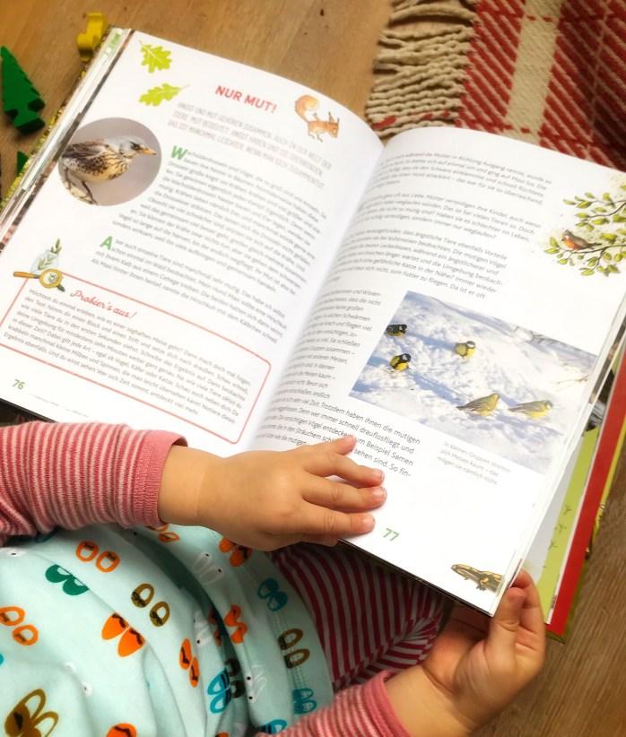 Kinderbuch über Tiere im Wald