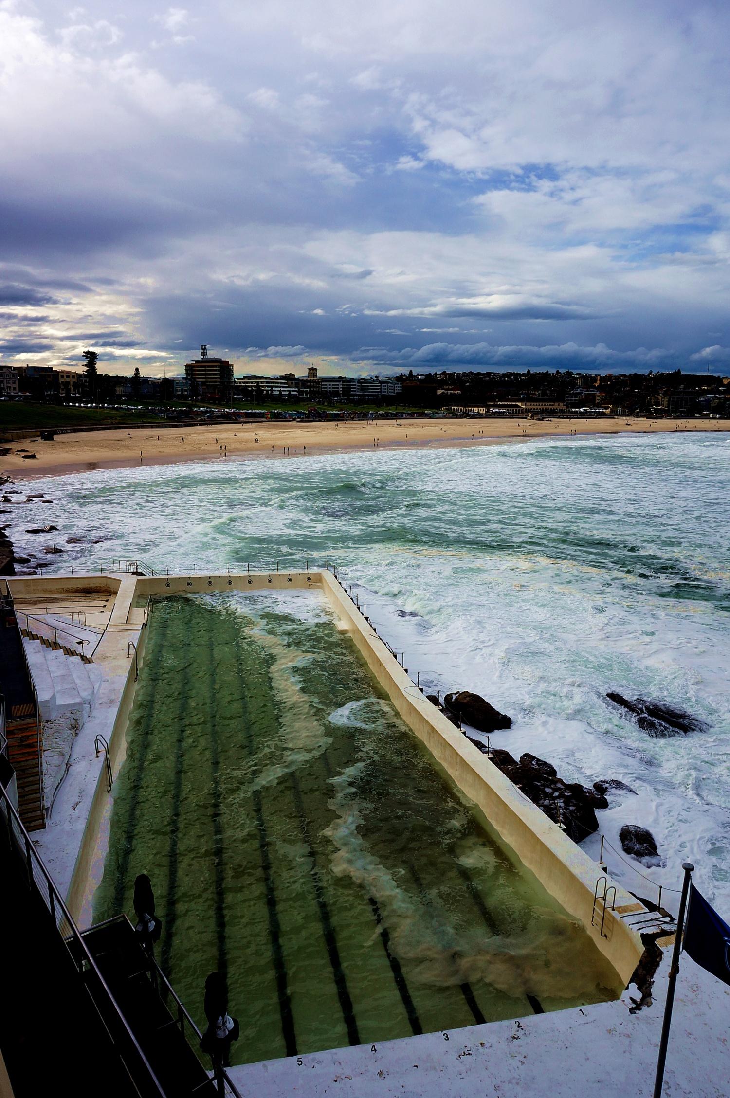 Basen na plaży w Sydney