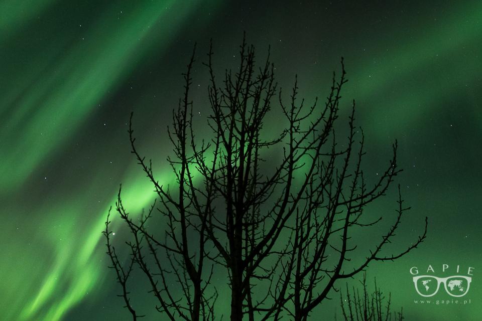aurora borealis zorza polarna 11