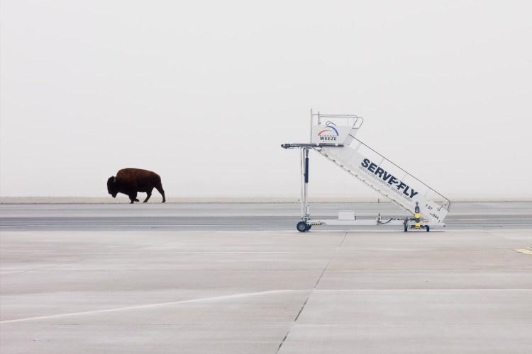 Zanim zaczniemy latać, zejdźmy na ziemię. Czy lotnisko w Białymstoku to dobry pomysł?