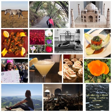 Collage of images of food, drinks, beautiful landscapes, women's march, spring blooms