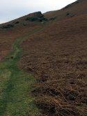 Black Combe - Rocky Valley 1