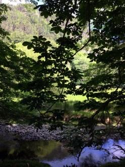 Afon Faw and Dol Idris
