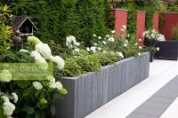 GAP Gardens - Modern paved garden with raised beds of ...