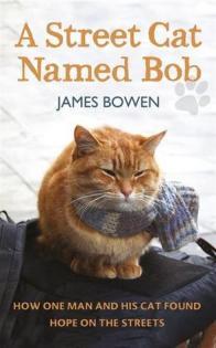 a-street-cat-names-bob