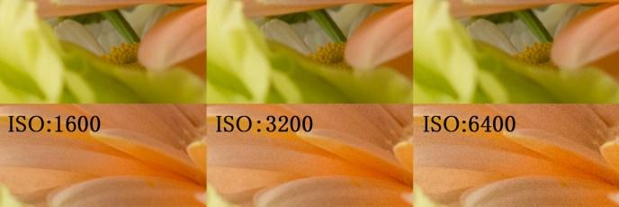 「ISO感度100~6400」で実際に撮影して画像のノイズチェック編