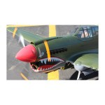 giant-p40-warhawk-rc-plane-kit-2000mm-wingspan (2)