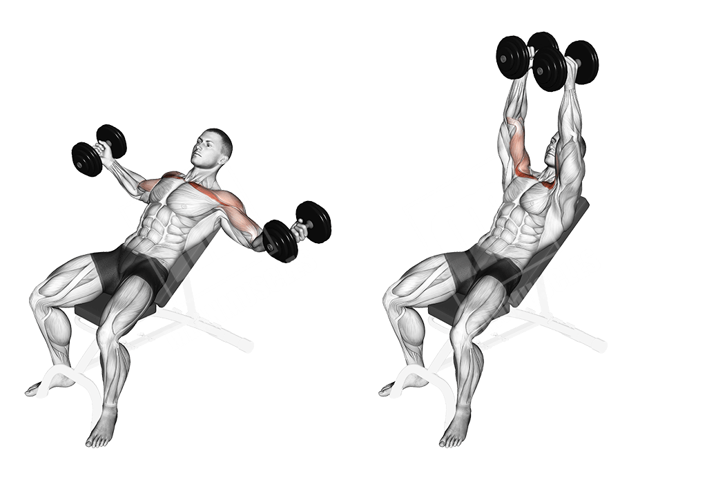 Workout with Just a Single Pair of Dumbbells