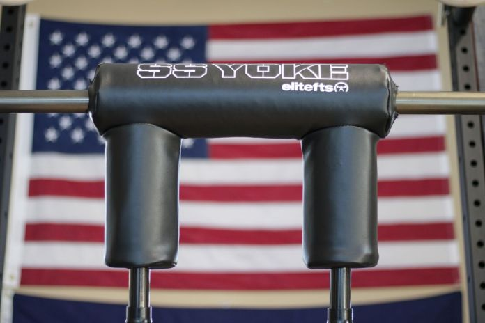 EliteFTS Safety Squat Bar with American Flag in background
