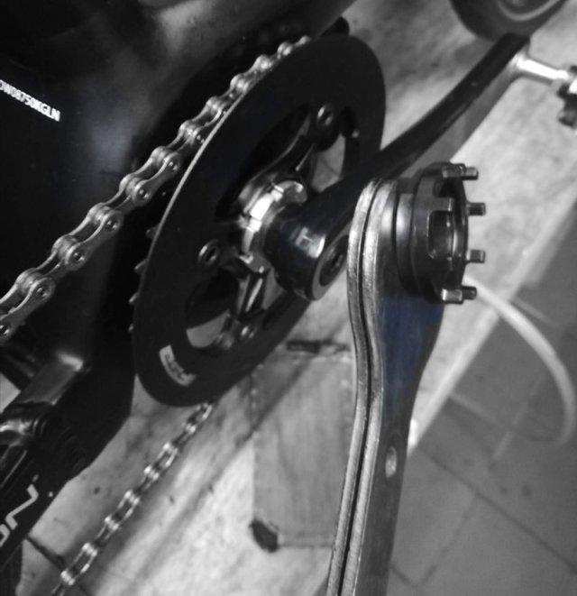 Montage Kettenblattspider am Bosch Active Line Plus Antrieb