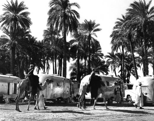 Airstream_Camels_Trailers