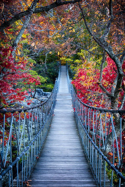 The swinging bridge at Rock City.