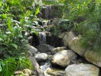 Garcia Rock And Water Design Blog