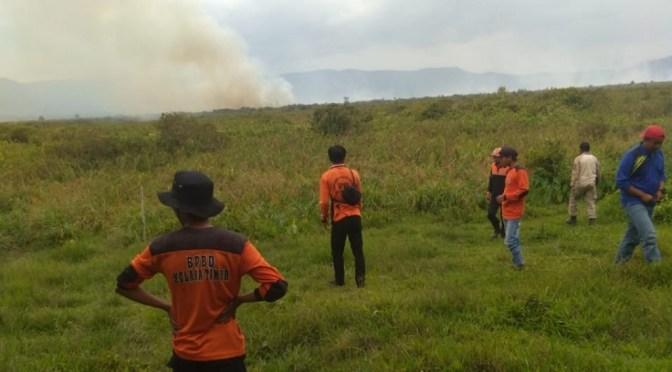 Lahan Seluas 150 Hektar Terbakar di Kolaka Timur