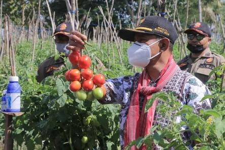 Wakil Bupati Belu : Pemerintah Wajib Bantu Petani