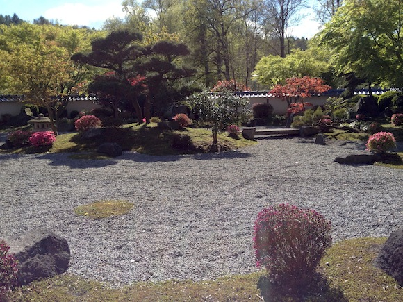 Der Japanische Garten in voller Blüte.