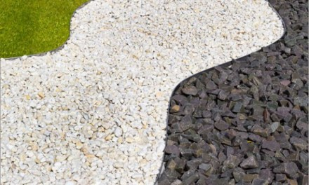 3 Gründe warum Rasenkanten eurem Garten gut tun