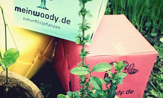 Verlosung: Gewinnt ein Meinwoody-Pflanzset!