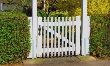 Sichtschutz im Garten – diese Möglichkeiten habt ihr
