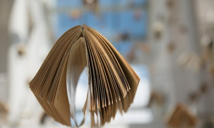 Buchvorstellung: Praktische Bücher aus dem Quelle & Meyer Verlag