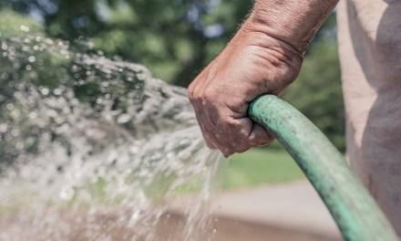 Das optimale Bewässerungssystem für einen Garten