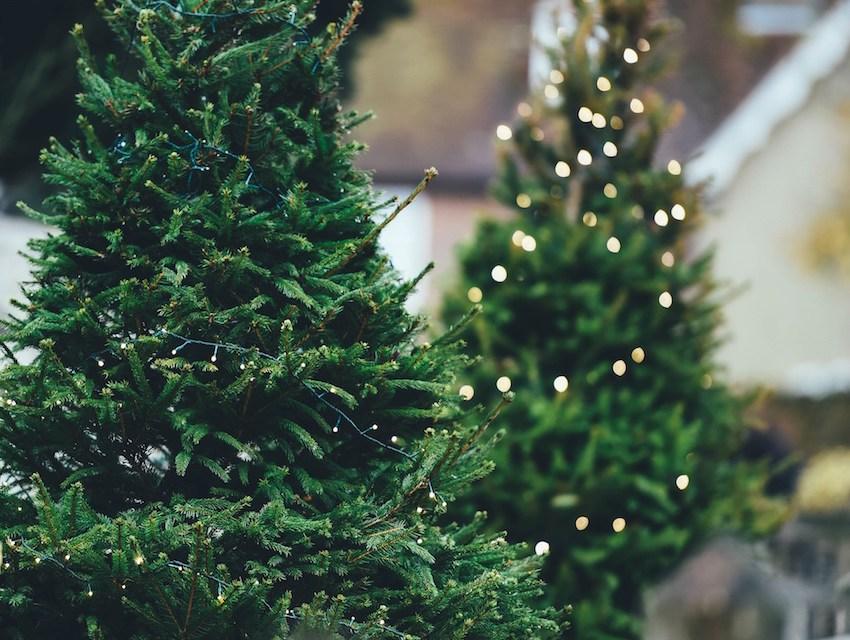 Weihnachtsdekoration für den Garten – Pro und Contra