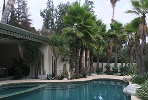 Yariv Residence