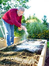 edible landscaping - organic