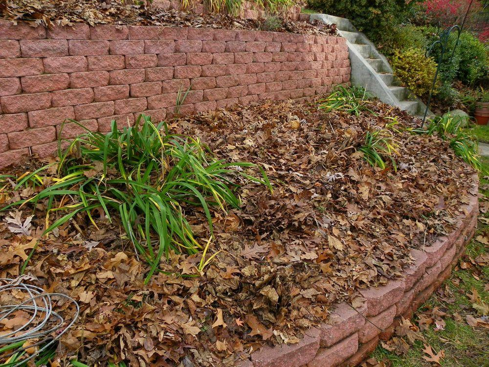 Are Leaves Good Mulch Garden