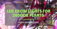Best Cheap LED Grow Lights For Indoor Plants (on Amazon 2018)