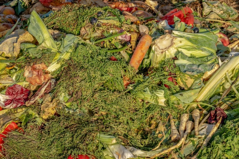 what not to put in compost