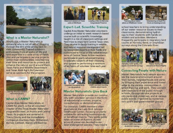 Brochure design for my non-profit