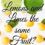 Are Lemons and Limes the same Fruit