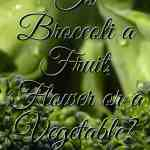Is Broccoli a Fruit, Flower or a Vegetable