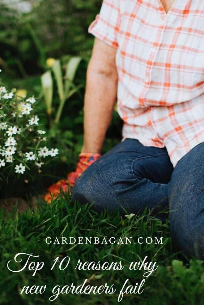 10 reasons why gardeners fail