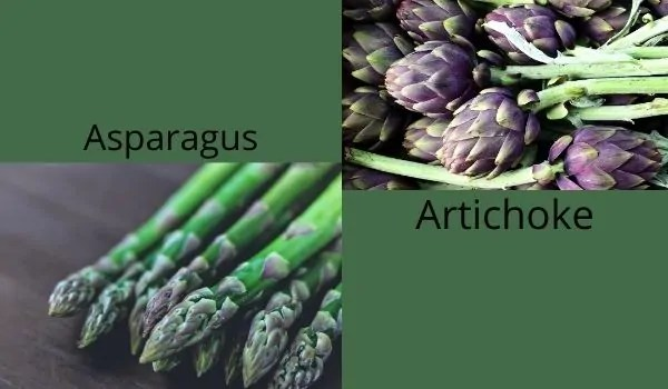 vegetables name start with A to Z