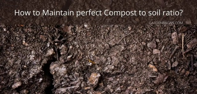 How to Maintain perfect Compost to soil ratio