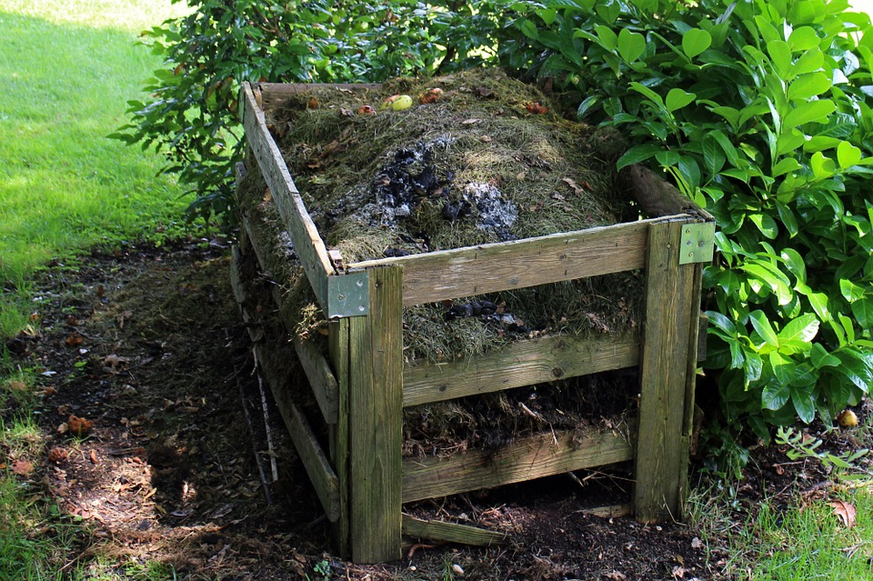 A wooden compost bin bursting full of organic compost sitting in the shade of a tree.