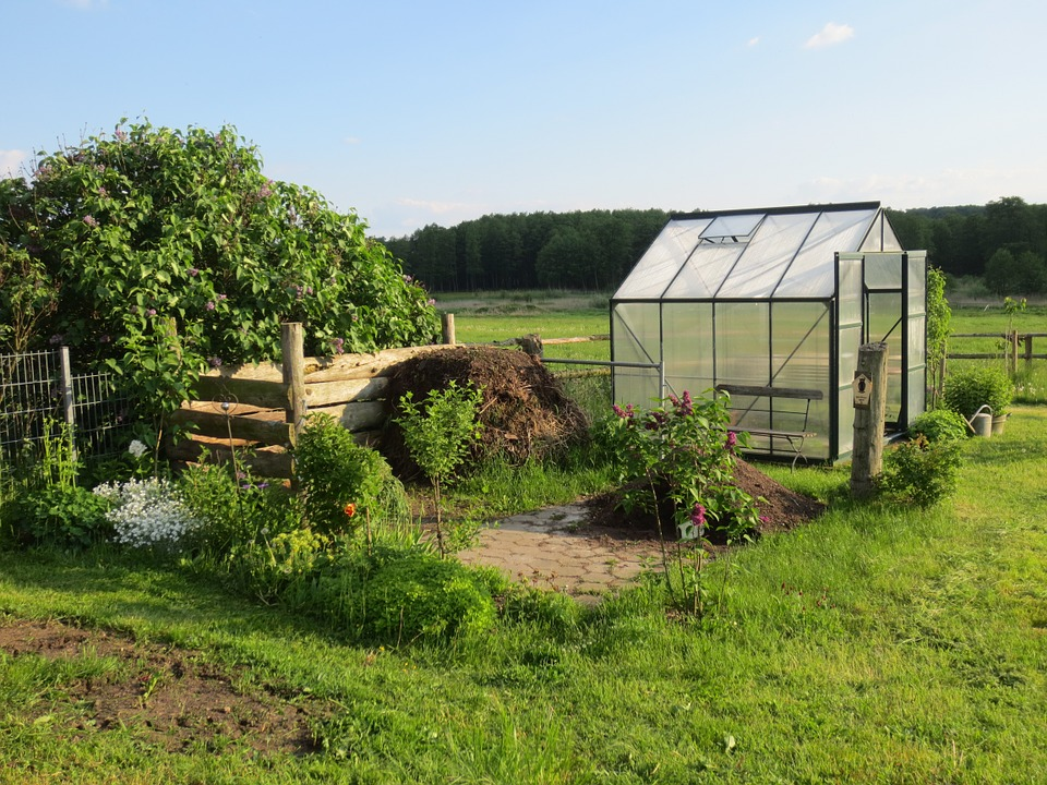 A greenhouse, fruit trees, and a few shrubs growing on a german allotment.