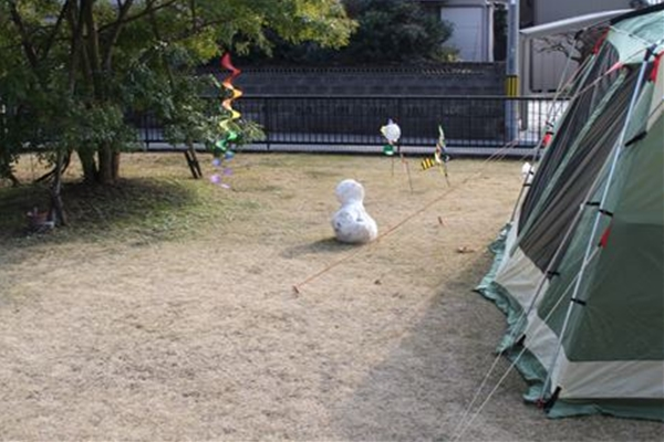 IMG_2771_T_T1