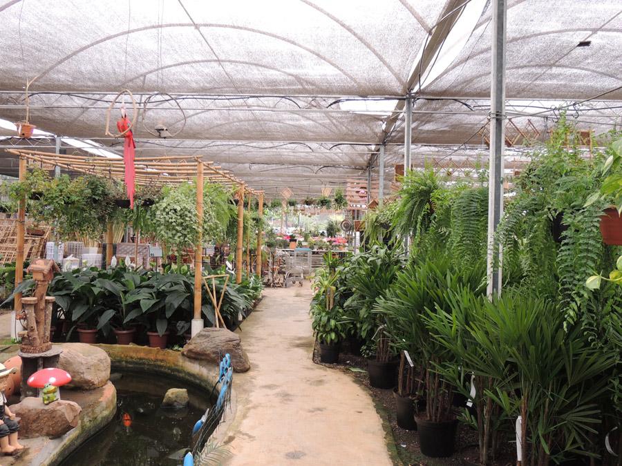 Garden Center Alphaville