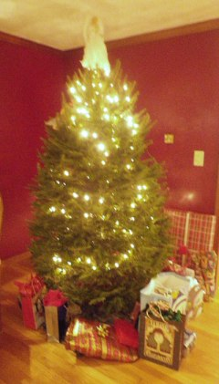 Anne's Christmas tree